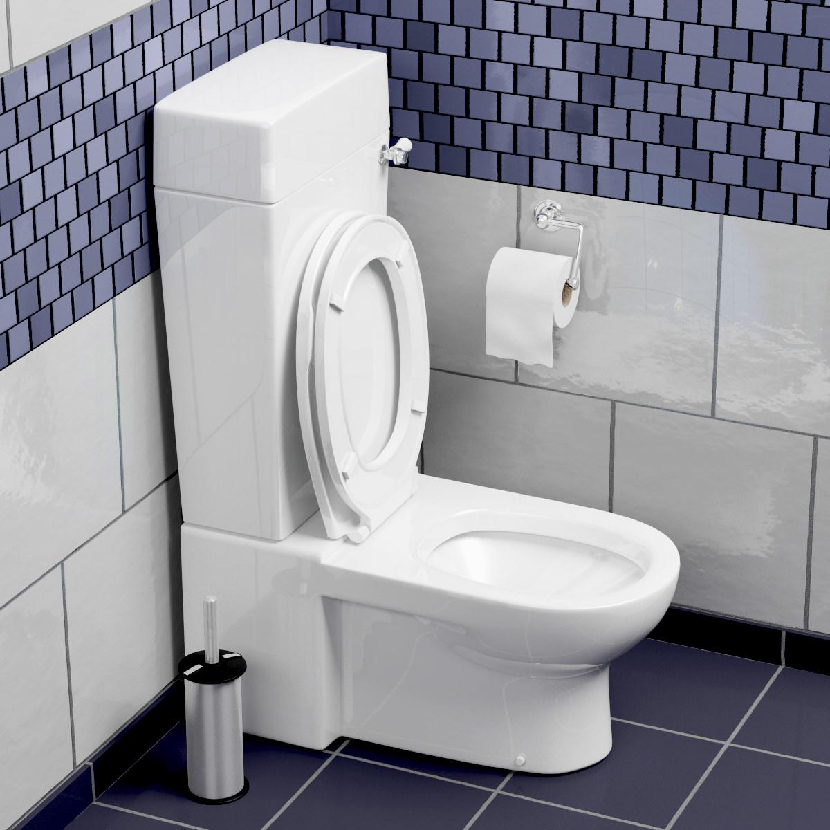 Toilet 3d model max obj fbx mtl mat - Toilet model ...