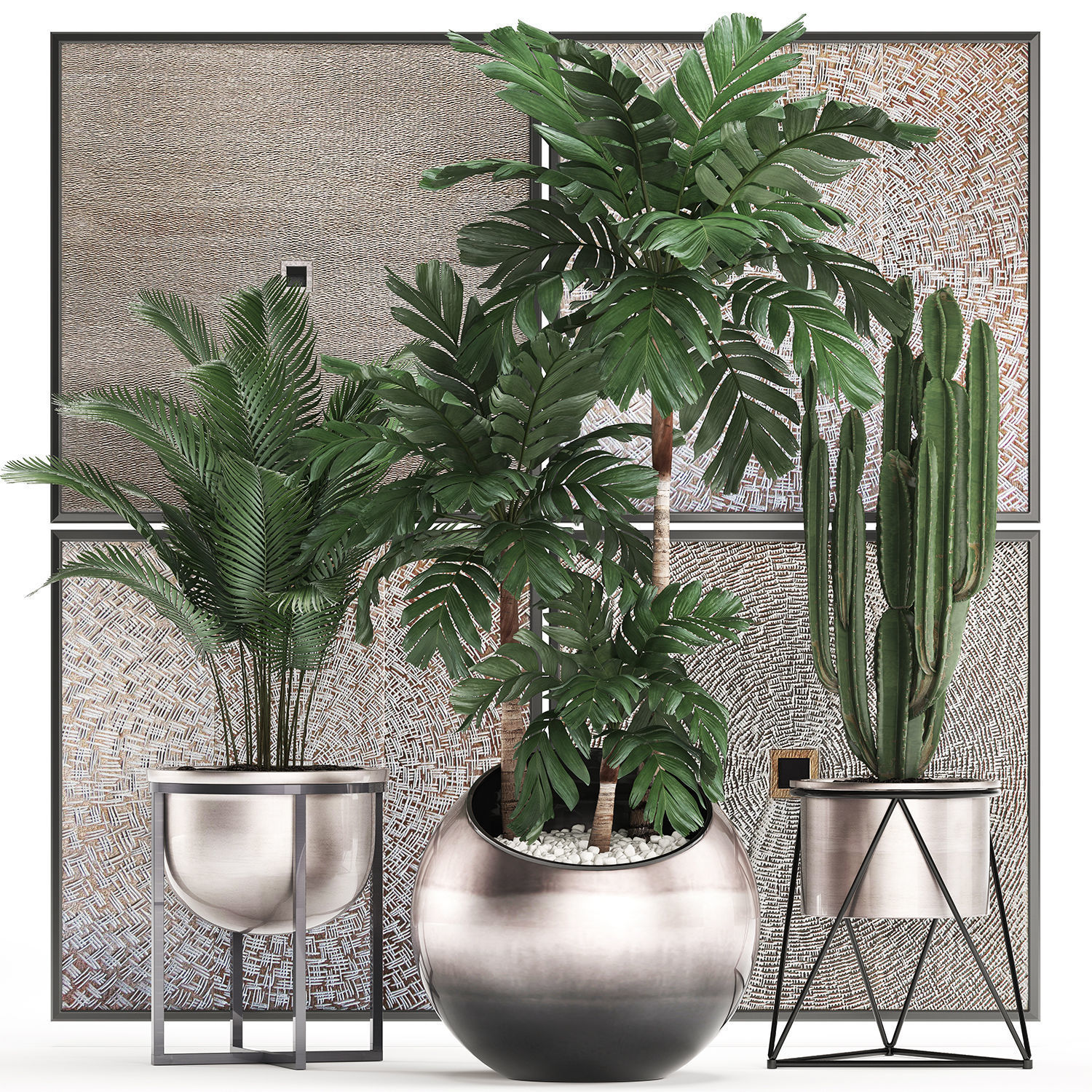 Decorative plants in flower pots for the interior 470