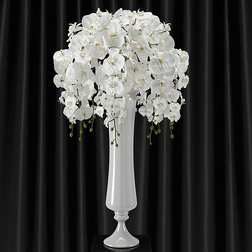orchid phalaenopsis bouquet d model max fbx, Natural flower