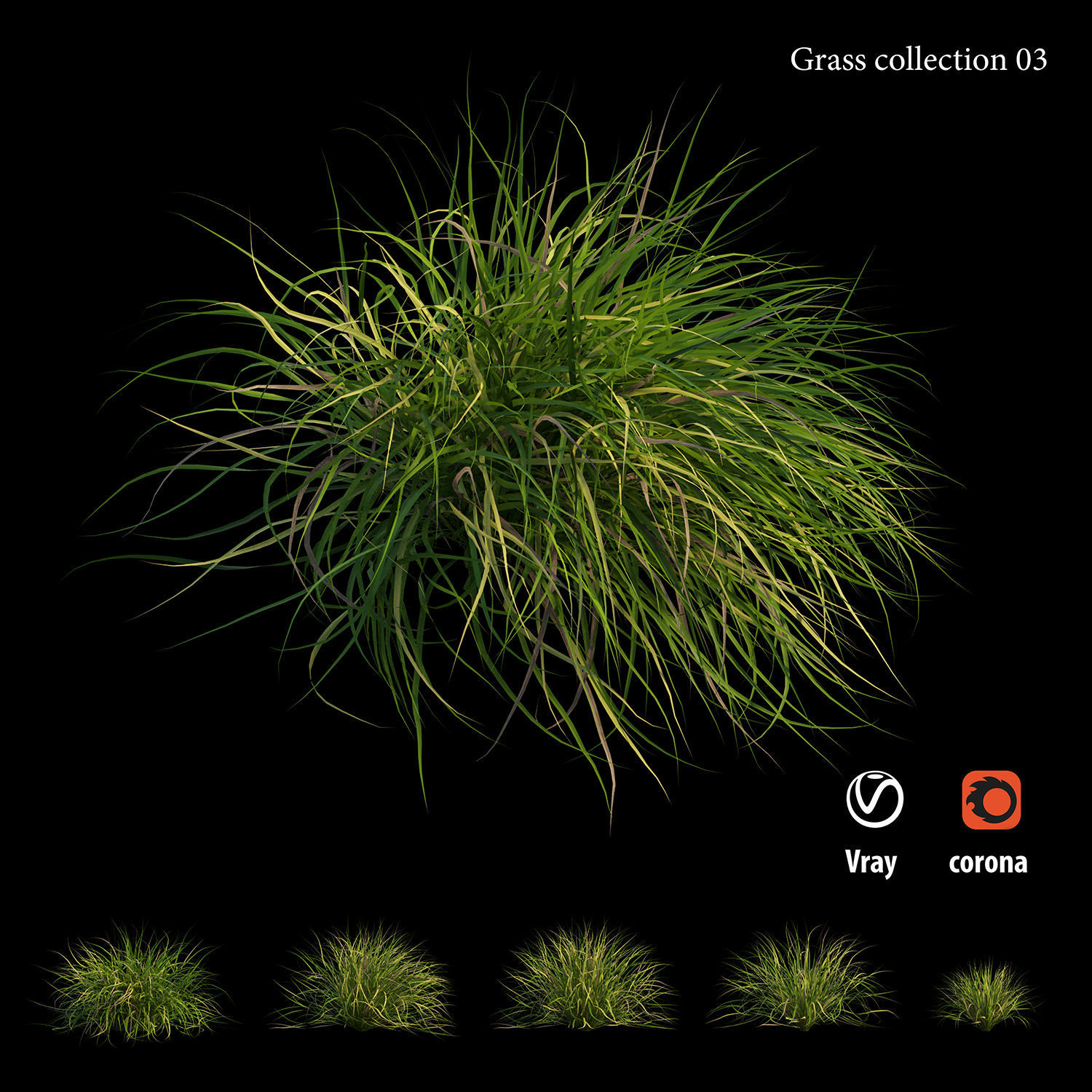Grass collection 03