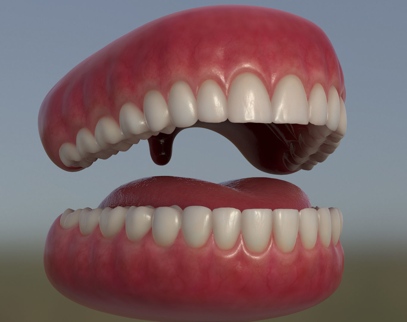Teeth with gums and Tongue