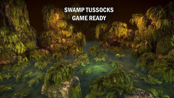 Swamp tussocks