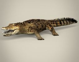 3d asset low poly realistic crocodile low-poly