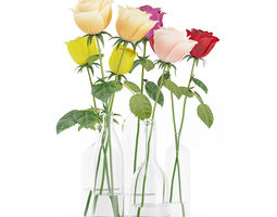 roses in glass vases 3d