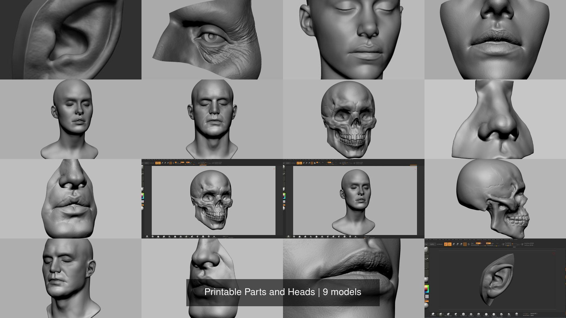 Printable Parts and Heads