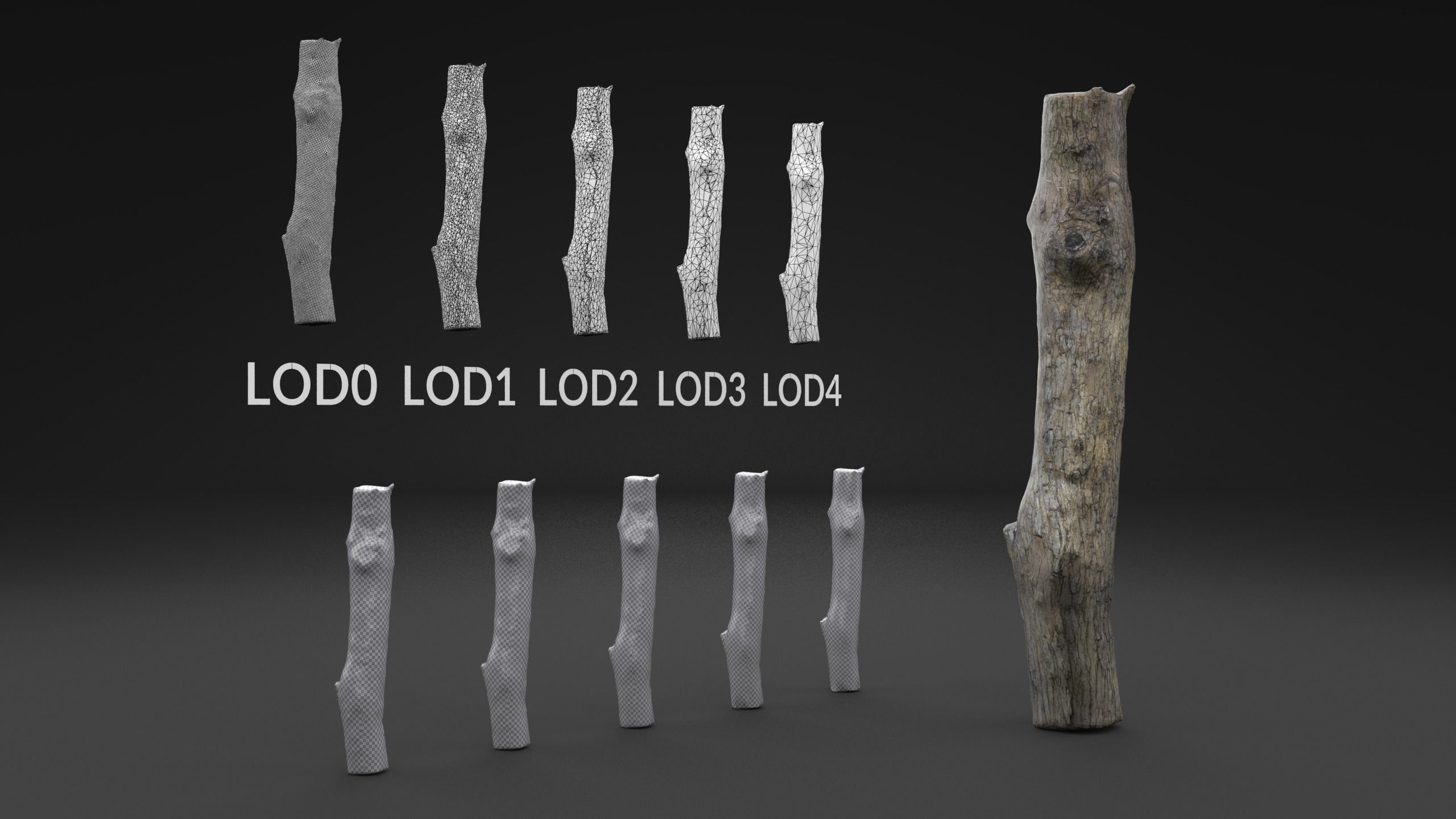 Scanned Piece Of Wood Log LOW POLY LODs