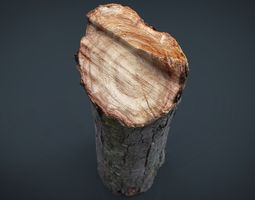 3D asset Wood Log 2