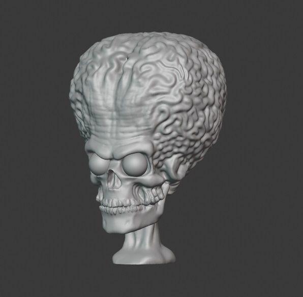 Martian Head