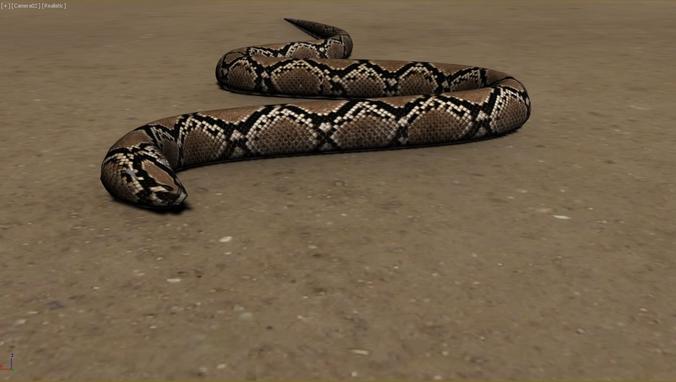 snake animations 3d model snake cgtrader