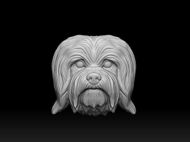 Havanese dog bichon bas relief 3d print model