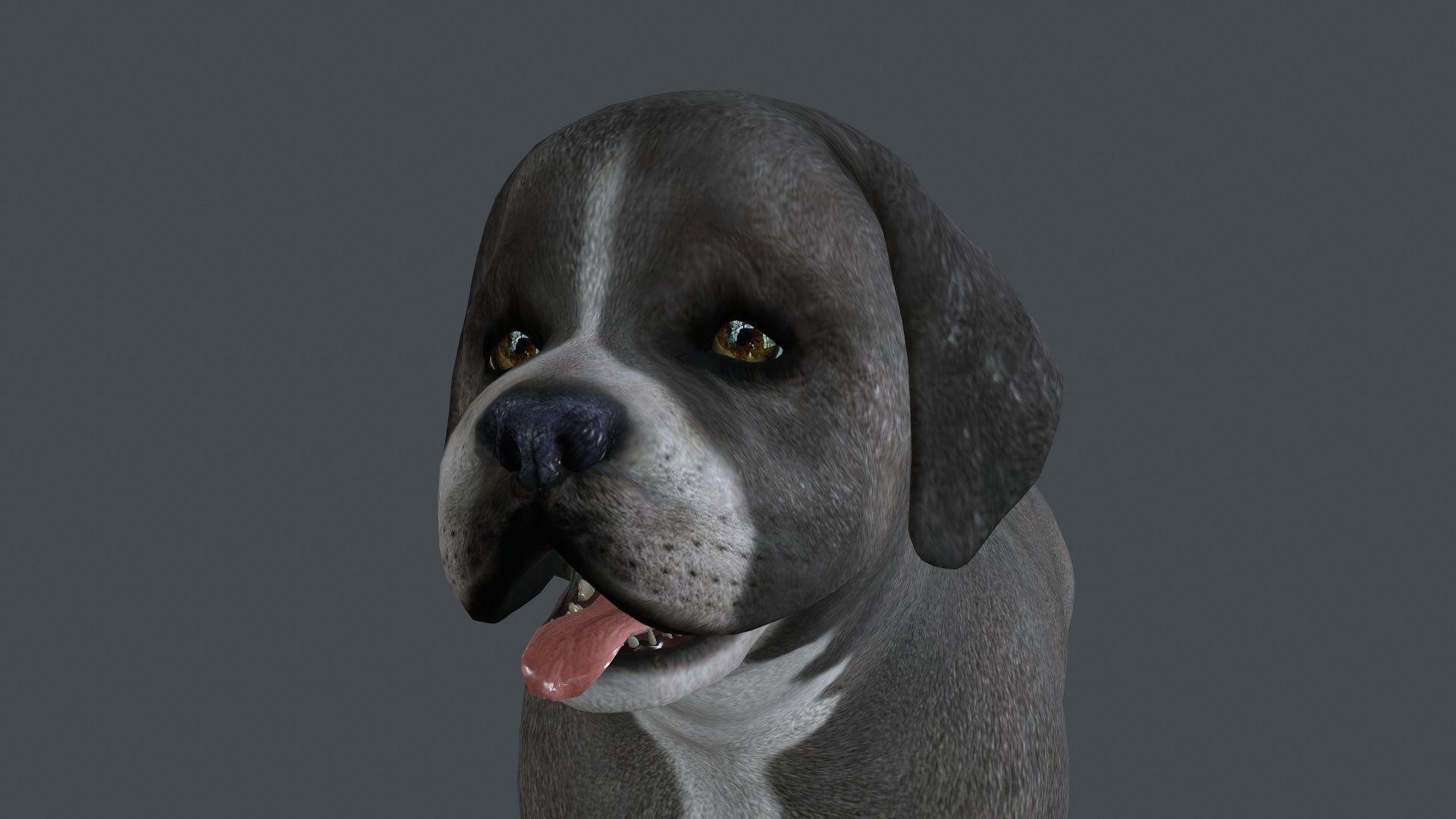 FDJI-008 Standing Dog