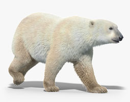 Polar Bear FUR ANIMATED 3D Model