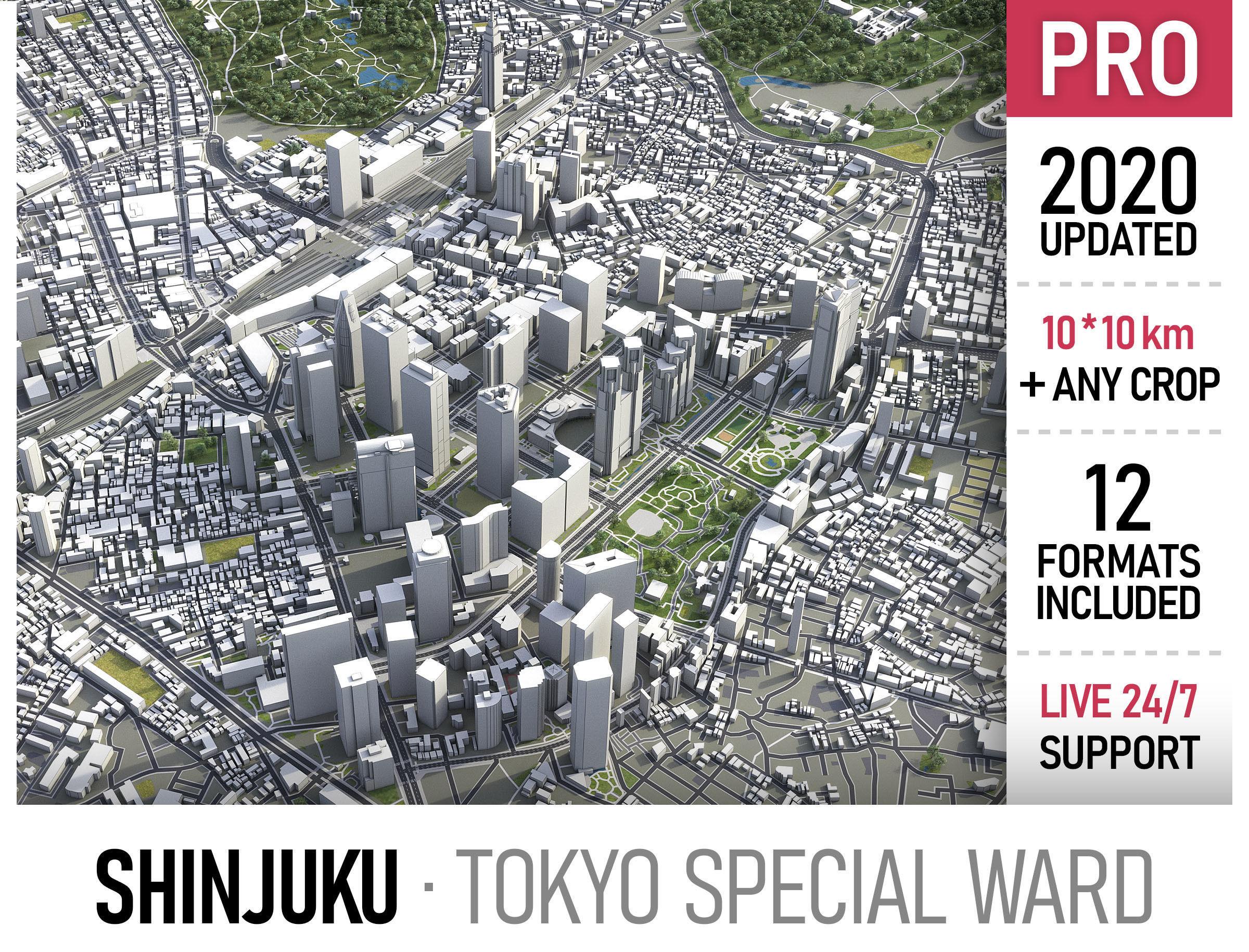 Shinjuku - Tokyo special ward