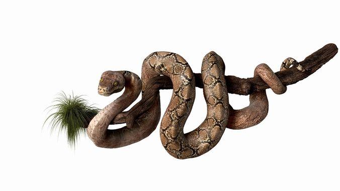 anakonda snake  high poly 3d model obj ztl 1
