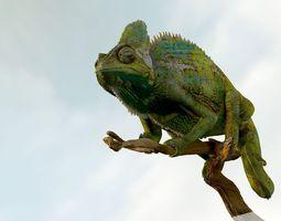3d model chameleon realistic high poly