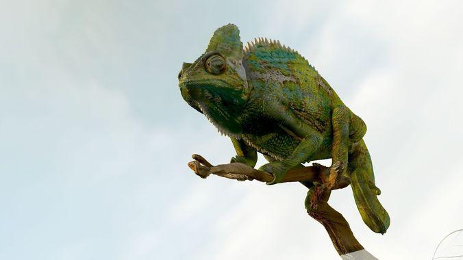 chameleon realistic high poly 3d model obj mtl ztl 1