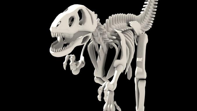 dinosaurus skeleton 3d model low-poly max obj mtl 1