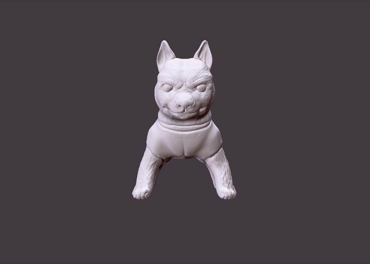 cute playfull husky puppy