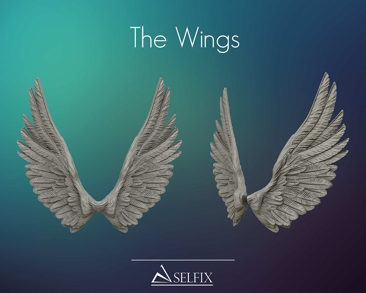 Wings ready for 3D print and useful in design