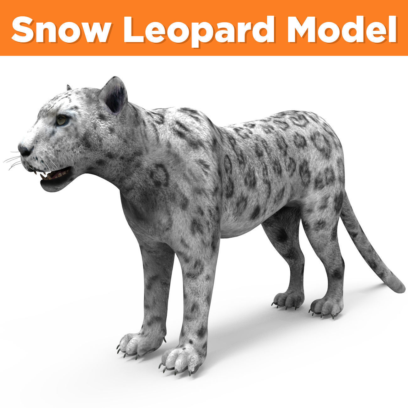 Game ready White Leopard 3D