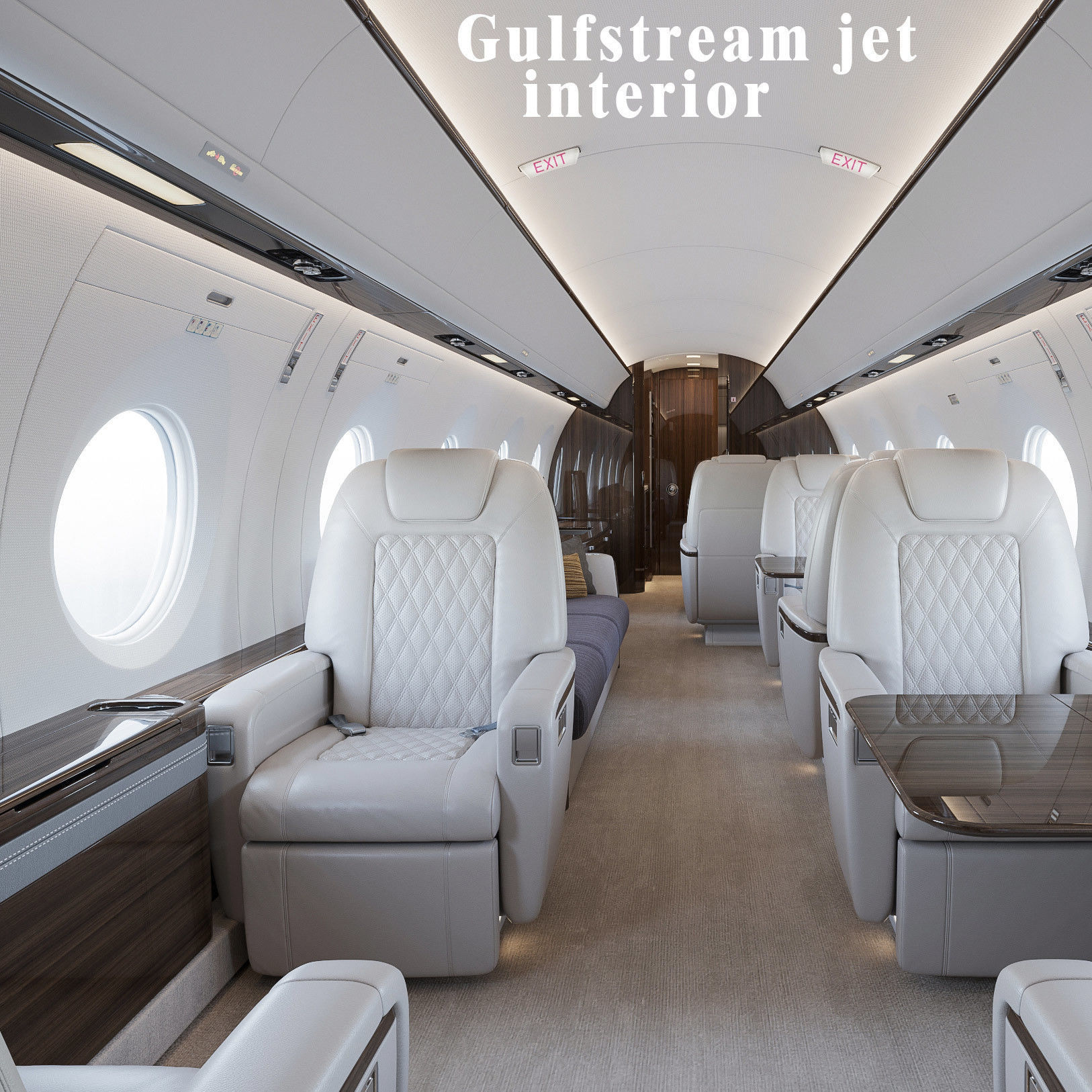 Gulfstream privat jet interior
