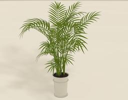 3d model areca palm plant pot