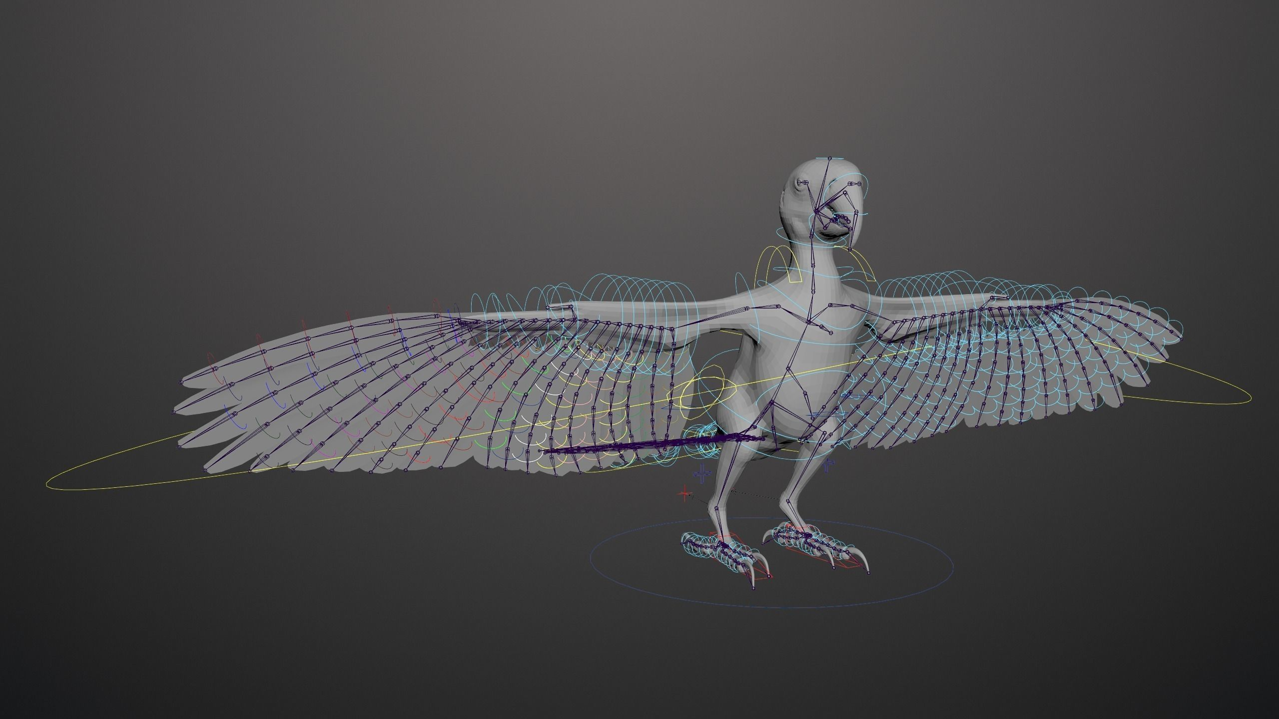 Basic model with Animation RIG of Macaw
