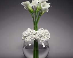 Calla Lily Hydrangeas Arrangements 3D model