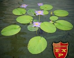 3D model Nymphaea caerulea Nile water lily