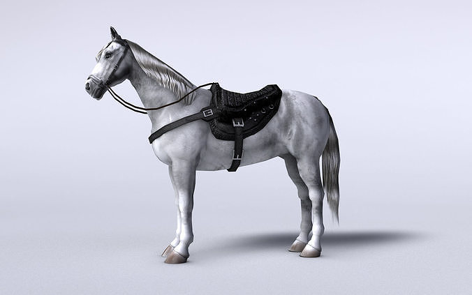 White horse with saddle and bags