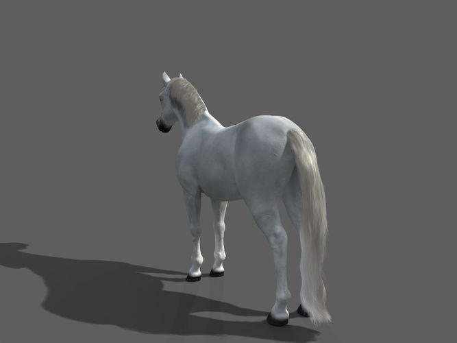 horse final 3d model rigged max 1