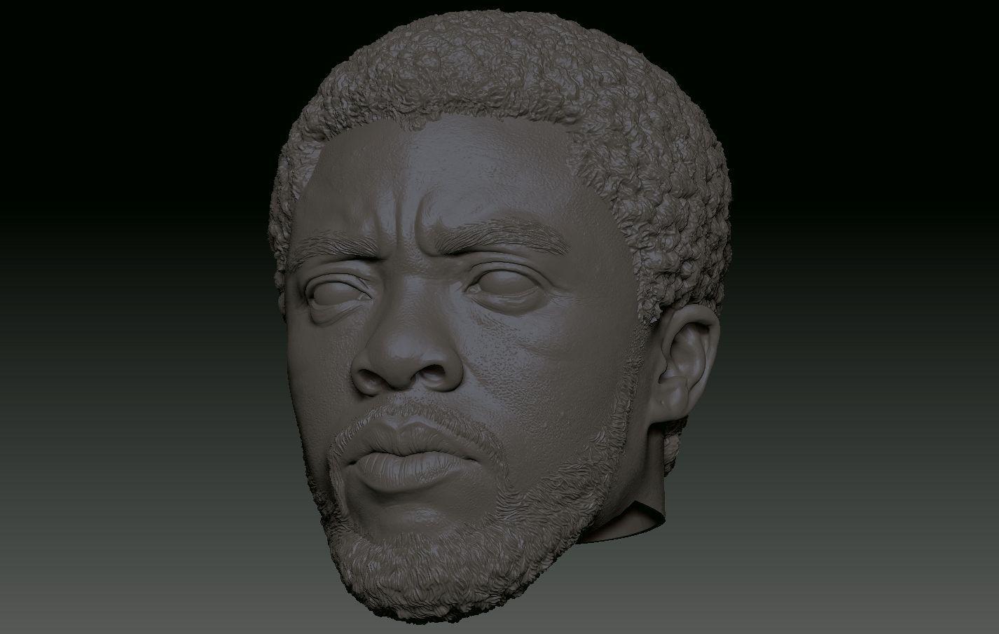 Chadwick Boseman Black Panther T Challa head