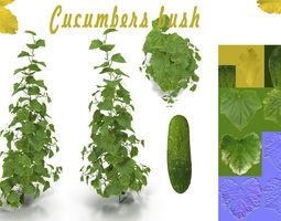 Cucumbers bush 3D model