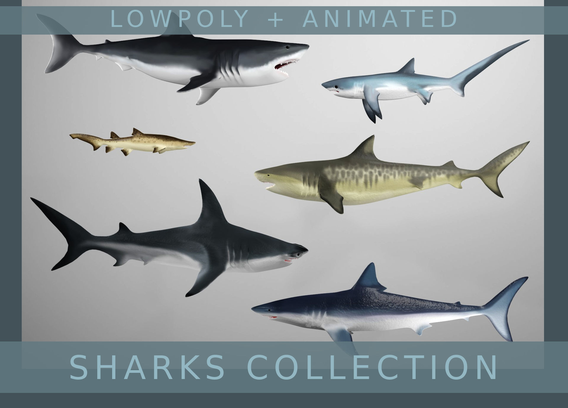 Lowpoly Animated Shark Collection