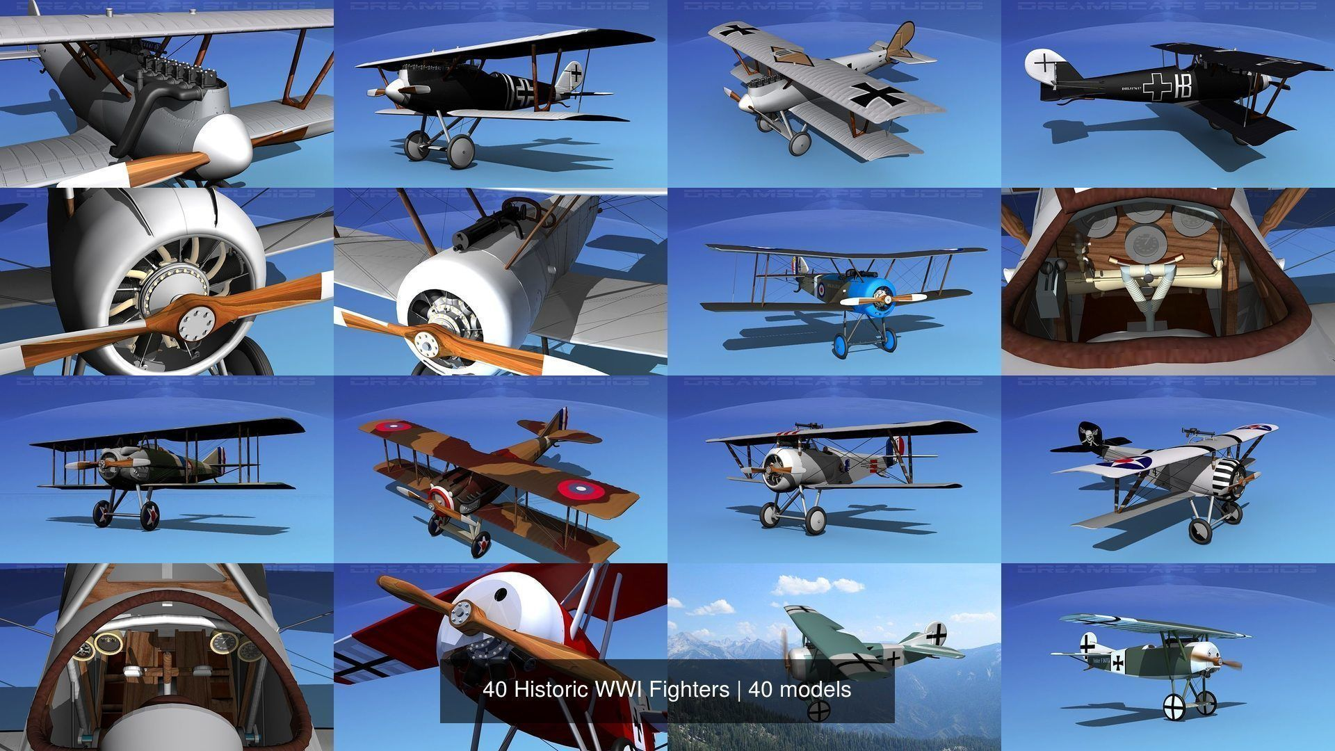 40 Historic WWI Fighters
