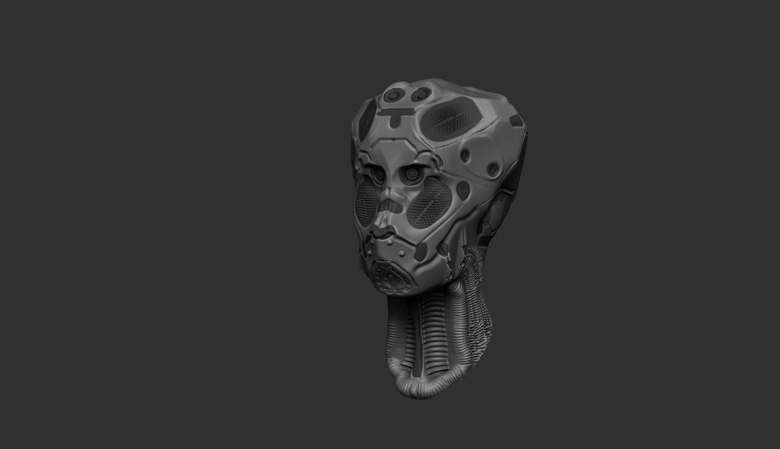 Robotic head concept