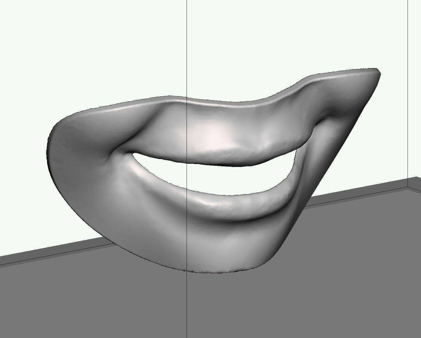 Smile line checker lip plate
