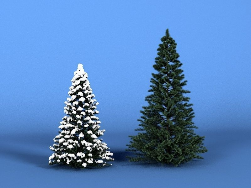 Christmas Tree Free Models