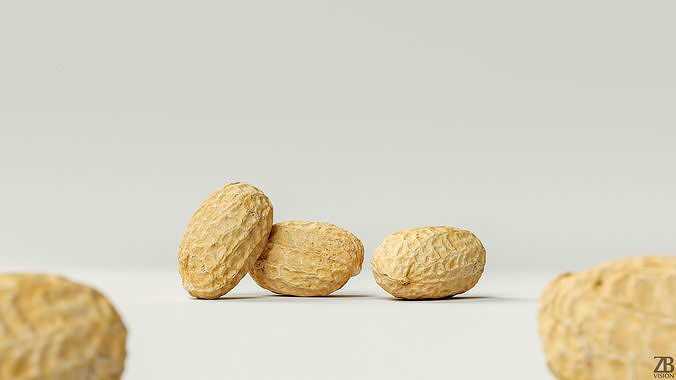 Peanut 003