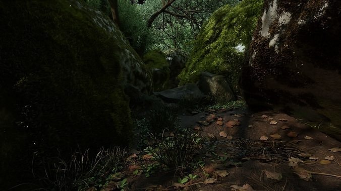 Realistic Forest scene Environment