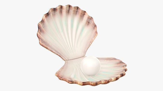 Seashell with pearl inside