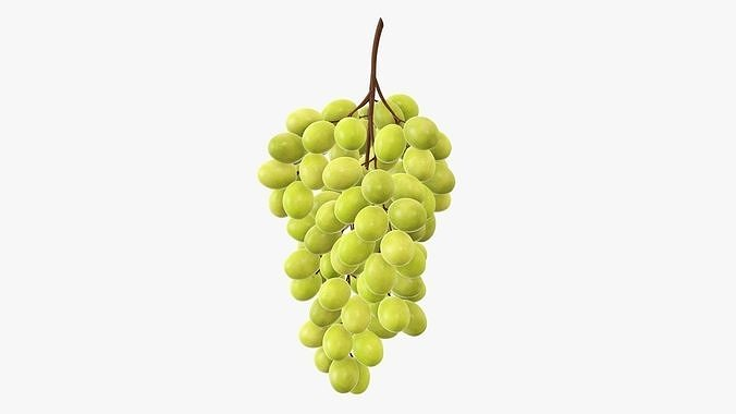 Grapes 05