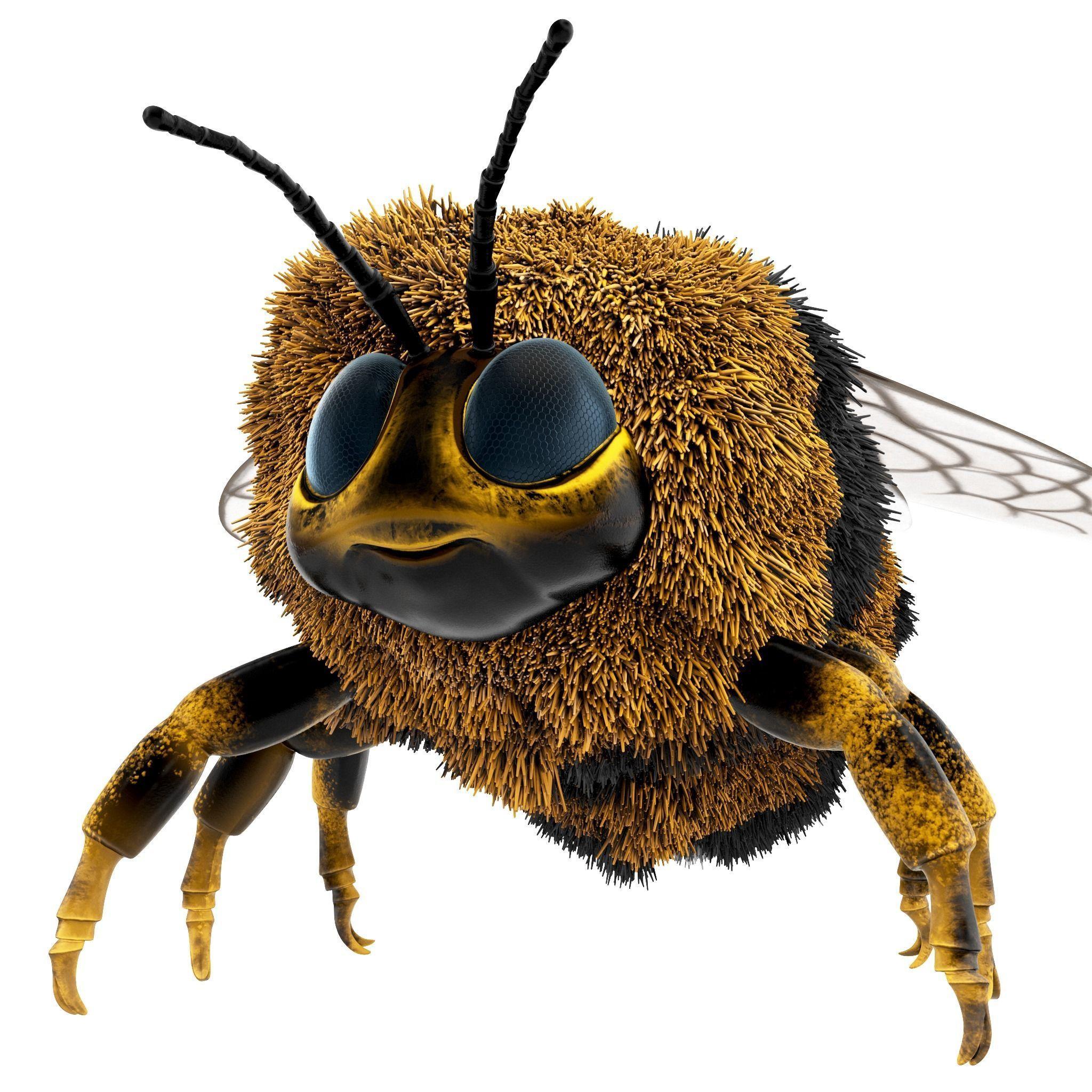 Bumblebee cartoon rigged animated
