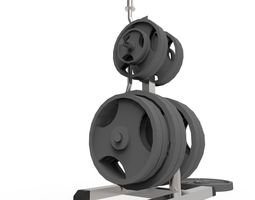 3D model Weights