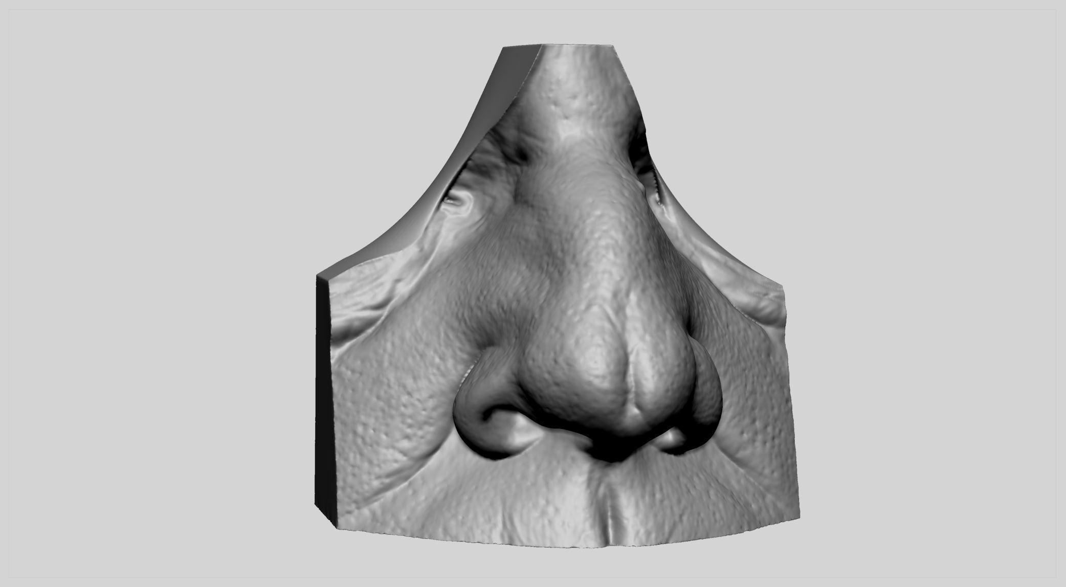 Male Nose