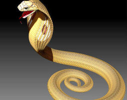india 3D here are ZTL snake and skeleton