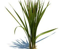 3D model Environmental Green Plant