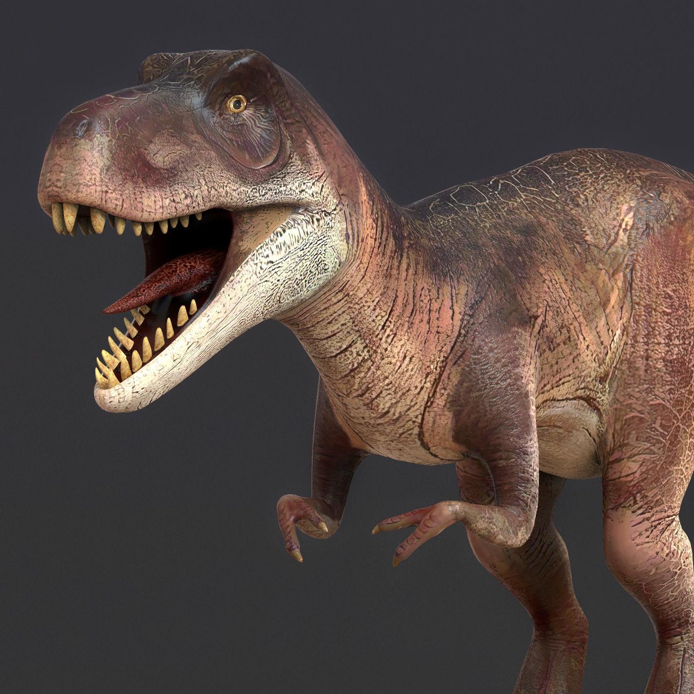 Young Trex Dinosaur