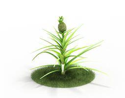 Pineapple Plant 3D model