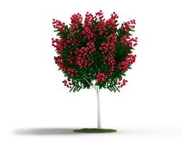 3D Decorative Ornamental Plant